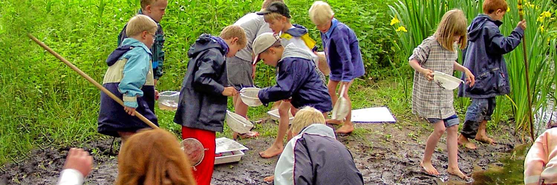 verein-zur-foerderung-von-naturerlebnissen-stade-projekte-auetal